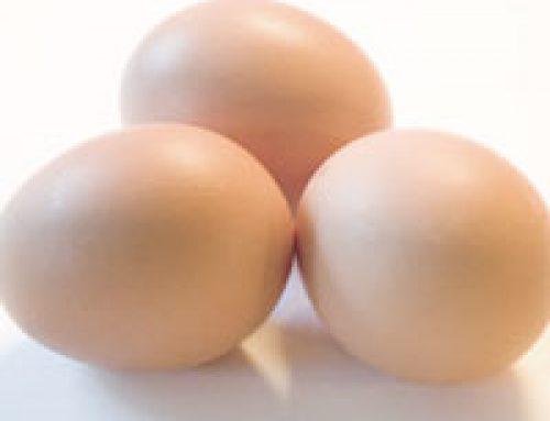 Mivel pótolható a tojás?